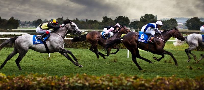 3 Tips on how to improve your Horse Racing Bets